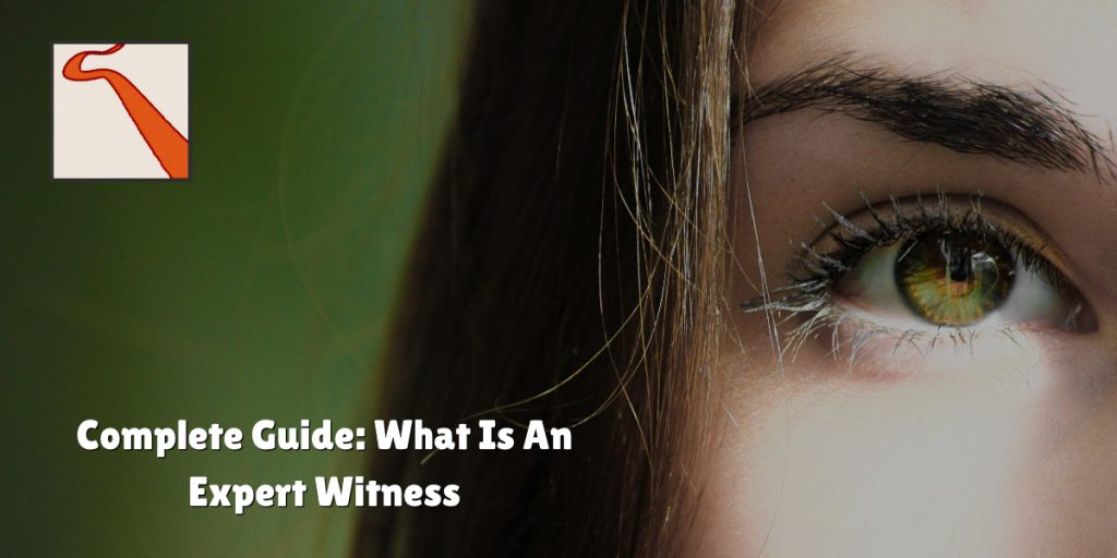 What is expert witness